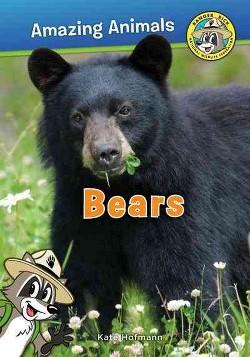 Bears (Paperback) (Kate Hofmann)