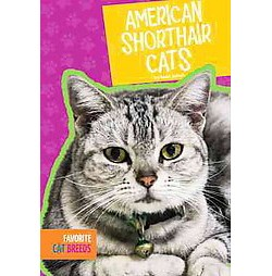 American Shorthair Cats (Library) (Mari Schuh)