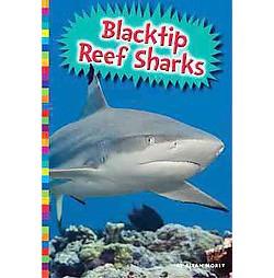 Blacktip Reef Sharks (Library) (Allan Morey)