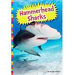 Hammerhead Sharks (Library) (Allan Morey)