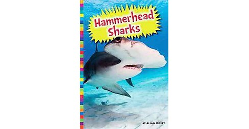 Hammerhead Sharks (Library) (Allan Morey) - image 1 of 1