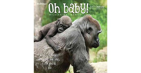 Oh Baby! 2017 Calendar : Wild Animal Babies (Paperback) - image 1 of 1
