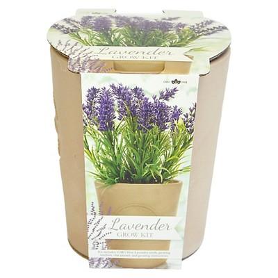 Lavender Herb Seed Kit - GMO Free