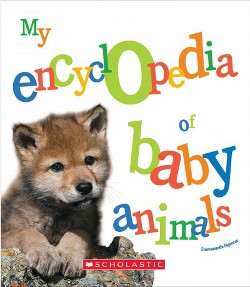 My Encyclopedia of Baby Animals (Library) (Emmanuelle Figueras)