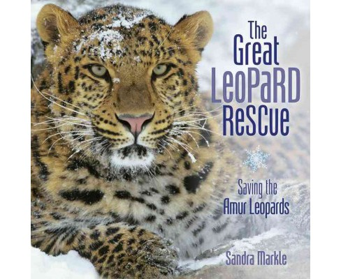 Great Leopard Rescue : Saving the Amur Leopards (Library) (Sandra Markle) - image 1 of 1