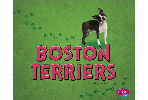Boston Terriers (Library) (Allan Morey) - image 1 of 1
