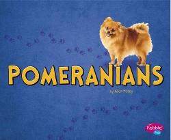 Pomeranians (Library) (Allan Morey)
