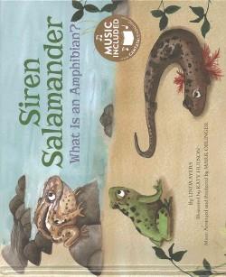 Siren Salamander : What Is an Amphibian? (Library) (Linda Ayers)