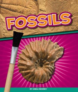 Fossils (Library) (Carla Mooney)
