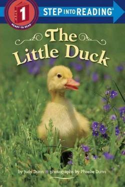 Little Duck (Library) (Judy Dunn)