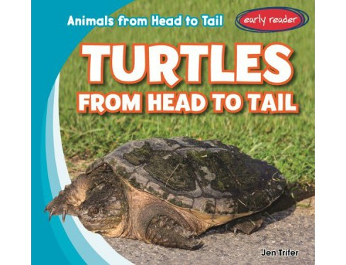Turtles from Head to Tail (Library) (Jen Trifer) - image 1 of 1