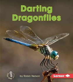 Darting Dragonflies (Library) (Robin Nelson)