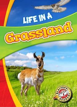 Life in a Grassland (Library) (Laura Hamilton Waxman)