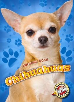 Chihuahuas (Library) (Mari Schuh)