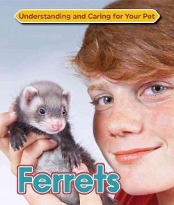 Ferrets (Library) (Ph.D. Anne McBride)