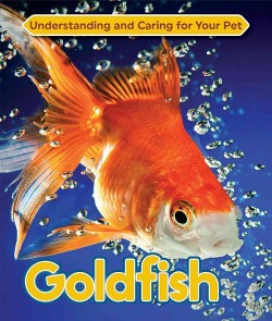 Goldfish (Library) (Carl Cozier)
