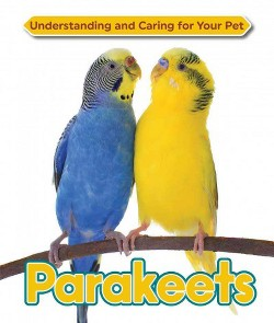 Parakeets (Library) (Catherine Smith)