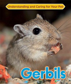 Gerbils (Library) (Jackie Roswell)