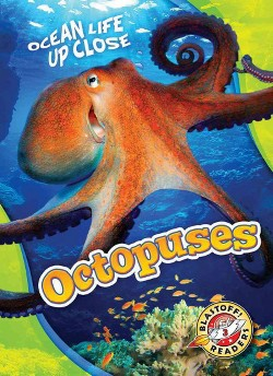 Octopuses (Library) (Christina Leaf)