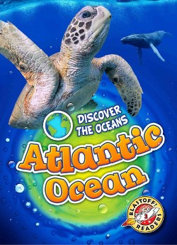 Atlantic Ocean (Library) (Emily Rose Oachs)
