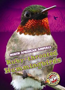 Ruby-Throated Hummingbirds (Library) (Chris Bowman)