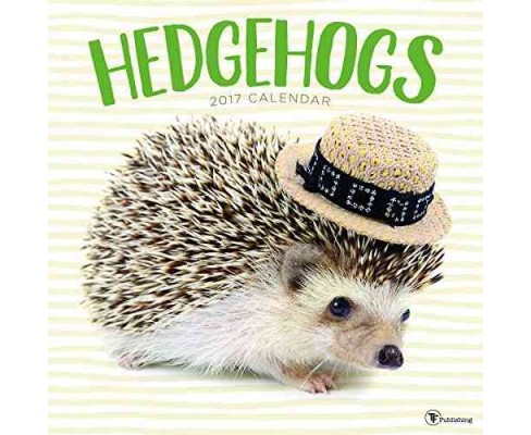 Hedgehogs 2017 Calendar (Paperback) - image 1 of 1