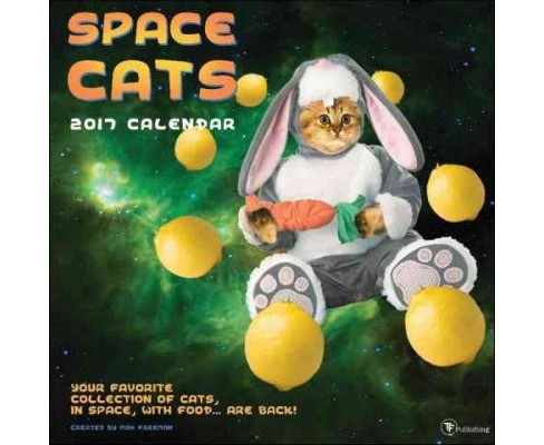 Space Cats 2017 Calendar (Paperback) - image 1 of 1