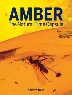 Amber : The Natural Time Capsule (Reprint) (Paperback) (Andrew Ross)