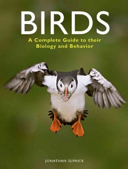 Birds : A Complete Guide to Their Biology and Behaviour (Reprint) (Paperback) (Jonathan Elphick)