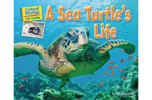 Sea Turtle's Life (Library) (Ellen Lawrence) - image 1 of 1