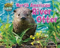 North American River Otter (Library) (Ellen Lawrence)