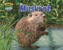 Muskrat (Library) (Ellen Lawrence)