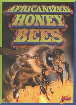 Africanized Honeybees (Library) (Scott Pearson)