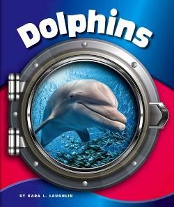 Dolphins (Library) (Kara L. Laughlin)