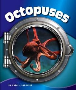 Octopuses (Library) (Kara L. Laughlin)