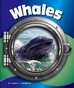 Whales (Library) (Kara L. Laughlin)