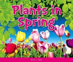 Plants in Spring (Library) (M. J. York)