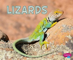 Lizards (Library) (Rose Davin)