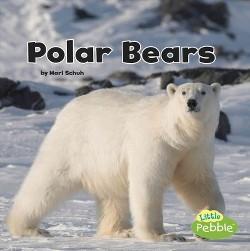 Polar Bears (Library) (Mari Schuh)