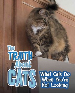 Truth About Cats : What Cats Do When You're Not Looking (Library) (Mary Colson)