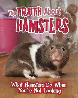 Truth About Hamsters : What Hamsters Do When You're Not Looking (Library) (Mary Colson)
