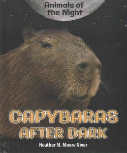 Capybaras After Dark (Library) (Heather M. Moore Niver)