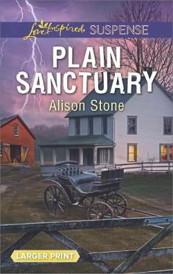 Plain Sanctuary (Paperback) (Alison Stone)