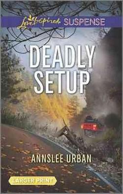 Deadly Setup (Paperback) (Annslee Urban)