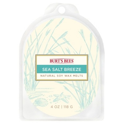 Warmer Melts Sea Salt Breeze 4oz - Burt's Bees®