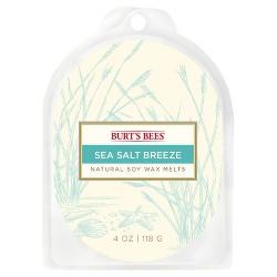 Warmer Melts Sea Salt Breeze 4oz - Burt's Bees®