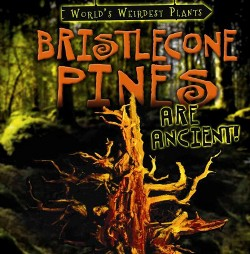 Bristlecone Pines Are Ancient! (Vol 1) (Paperback) (Patricia Fletcher)