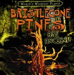 Bristlecone Pines Are Ancient! (Vol 1) (Library) (Patricia Fletcher)