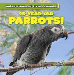 95-Year-Old Parrots (Vol 6) (Paperback) (Leonard Atlantic)