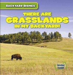 There Are Grasslands in My Backyard! (Vol 1) (Paperback) (Walter Laplante)
